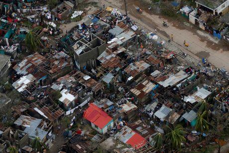Chum anh Haiti tan hoang sau sieu bao Matthew - Anh 8