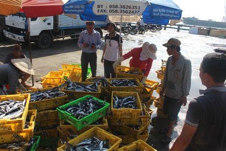 Ban cach khoi phuc thi truong EU cho san pham thuy san - Anh 1