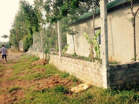 Ba Vi (Ha Noi): Cong trinh hang tram m2 xay dung tren dat nong nghiep, UBND xa Cam Thuong xu ly tren giay - Anh 1