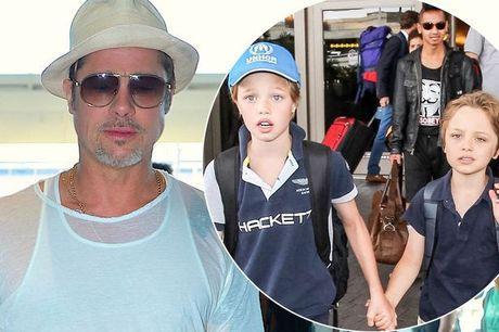 Brad Pitt da duoc gap cac con ke tu khi ly hon - Anh 1