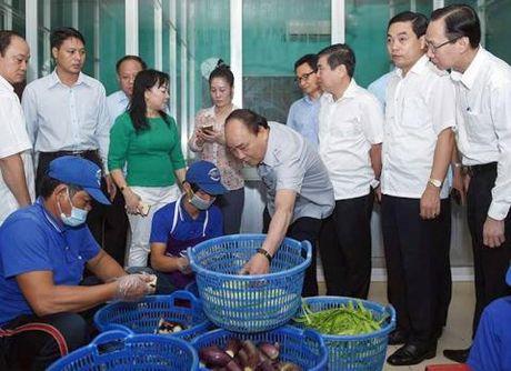TP.HCM chua duoc lap So Ve sinh An toan thuc pham - Anh 1