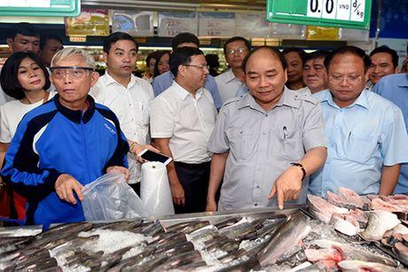 Chuyen 'vi hanh' mang nhieu thong diep cua Thu tuong Nguyen Xuan Phuc - Anh 7