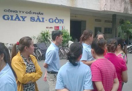 Can thu hoi dat su dung trai phep cua Cty co phan Giay Sai Gon - Anh 1