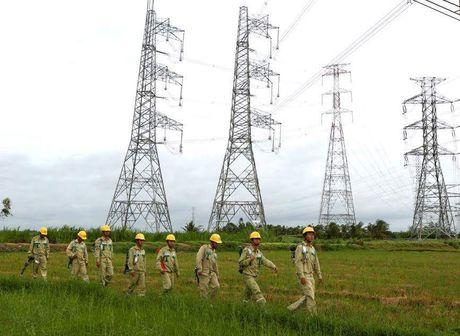 Yeu cau dung ngay Dai Vinh danh cong trinh 500 kV - Anh 1