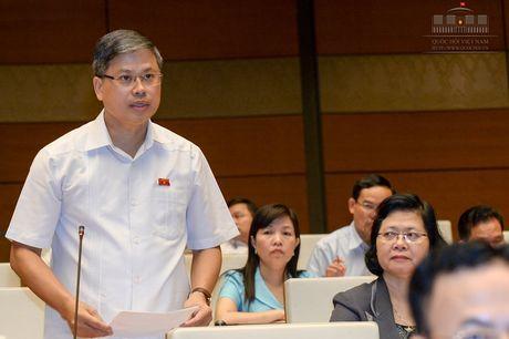 DB Nguyen Sy Cuong: 'Se chat van Bo truong Xay dung ve quan ly NOXH' - Anh 1