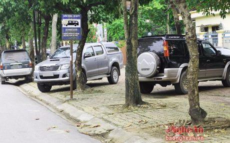Bat nhao muon kieu do xe o thanh Vinh - Anh 6