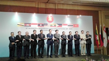 Huong toi mot cong dong ASEAN phat trien nang dong va ben vung - Anh 1