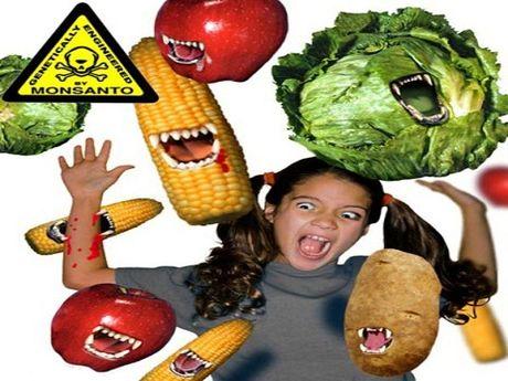 An GMO, nguoi bi bien doi gen? - Anh 1