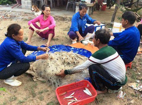 """""""Chot"""" phuong an quyet toan 500 trieu USD Formosa boi thuong - Anh 1"""