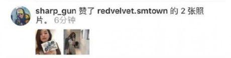 Seul Gi (Red Velvet) co mot loat fan nam la nguoi noi tieng - Anh 8