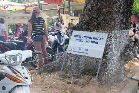 Hoi sach Ha Noi 2016, phi gui xe dat hon tien sach - Anh 3