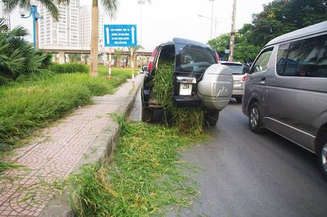 Ngac nhien Ford Everest dung cho co o Ha Noi - Anh 3