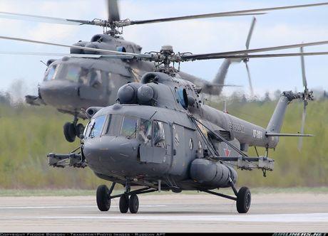 Them mot nuoc DNA theo Viet Nam mua truc thang Mi-17 - Anh 1