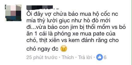 Bi hai chuyen chong 'me' cho hon vo - Anh 4