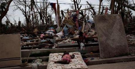 Haiti phai chon nguoi chet vi bao trong mo tap the - Anh 1