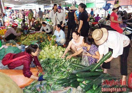 Chuyen doi 50% cho tren dia ban Nghe An theo mo hinh moi - Anh 3