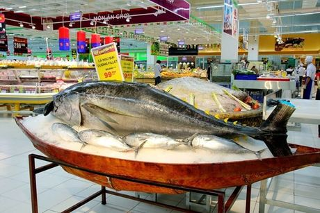Mach nuoc cho doanh nghiep thuy san Viet muon vao EU - Anh 1