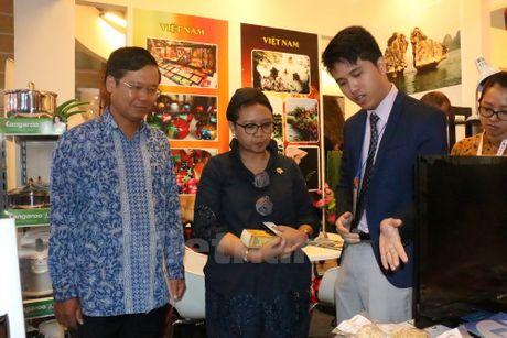 Co hoi de doanh nghiep Viet Nam khao sat thi truong Indonesia - Anh 2
