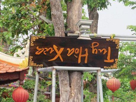 Can canh nha hang go khung nhat Phu Yen duoc cho 'song' 5 nam - Anh 6
