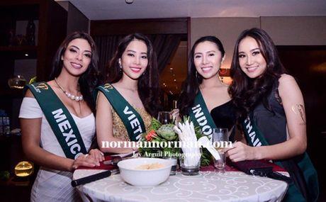 Nam Em dien vay giong Pham Huong gay chu y tai Miss Earth 2016 - Anh 4