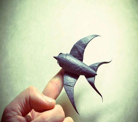 Ngam bo suu tap origami dong vat sinh dong cua nghe si Tay Ban Nha - Anh 12