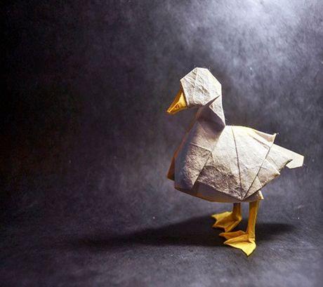 Ngam bo suu tap origami dong vat sinh dong cua nghe si Tay Ban Nha - Anh 8