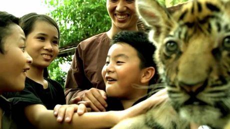 'Ve phia mat troi' - Huong den su yeu thuong muon loai - Anh 3
