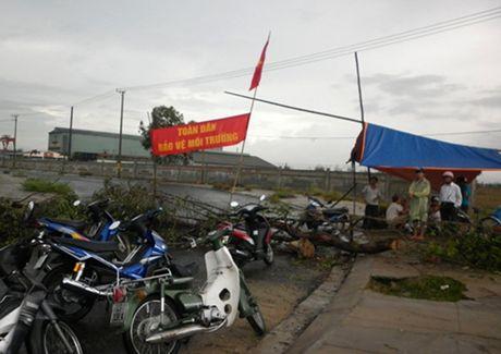 Chuyen gia: '1,7 trieu dan bi anh huong neu Quang Nam doi nha may thep' - Anh 1
