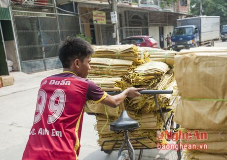 1001 nghe lam them cua sinh vien - Anh 6