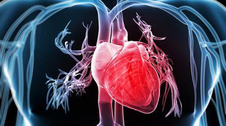 Khong dung Triprolidine khi co benh ly tim mach - Anh 1