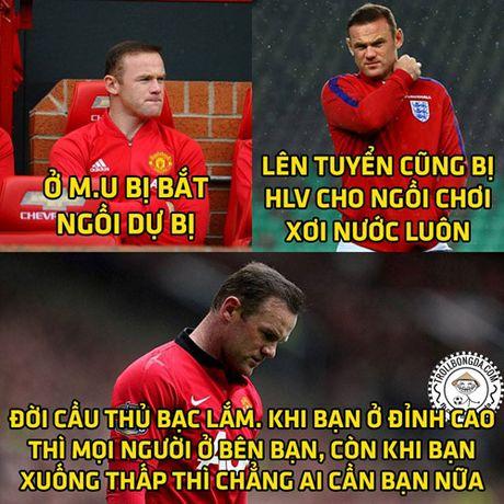 Biem hoa 24: Ba xa Rooney 'noi doa' voi CDV Anh - Anh 1