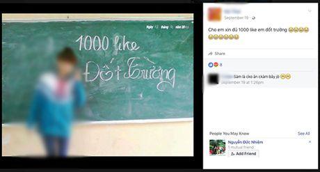 Nhung status 'Du 1.000 Like dot truong' nhan nhan tren Facebook - Anh 5