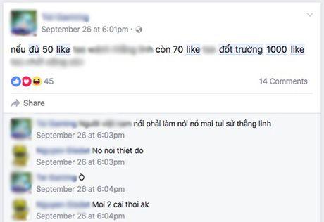Nhung status 'Du 1.000 Like dot truong' nhan nhan tren Facebook - Anh 8
