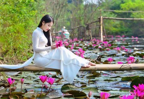Thieu nu khoe sac xuan mon mon ben ho hoa sung - Anh 3