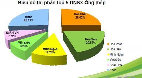 Hoa Phat dan dau thi phan ong thep trong 9 thang qua - Anh 2