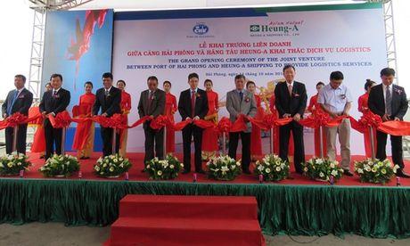 Cang Hai Phong lien doanh voi Heung-A khai thac dich vu logistics - Anh 1