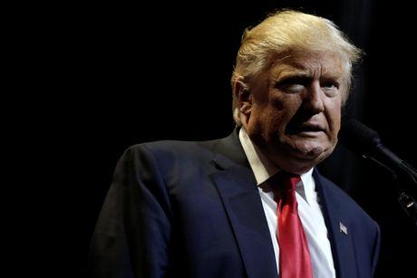 Hillary Clinton: Donald Trump khien toi chi muon xem meo lam tro - Anh 1