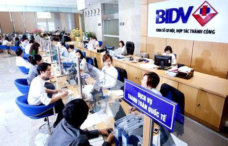 Vi sao co dong ngong dai hoi bat thuong o BIDV? - Anh 1