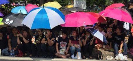De tang Vua Thai Lan 1 nam, treo co ru 1 thang - Anh 3