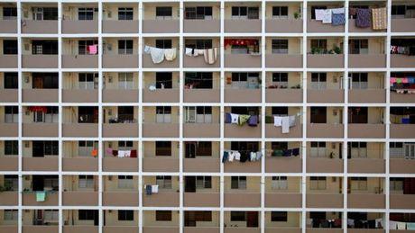 Singapore: Loi khuyen soc cua bo truong ve 'chuyen ay' - Anh 3