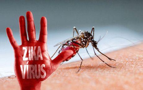 TP.HCM: Lai them 2 benh nhan nu nhiem virus Zika - Anh 1