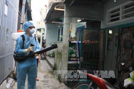 Them hai ca nhiem vi rut Zika tai Thanh pho Ho Chi Minh - Anh 1