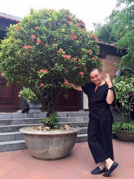 Xuan Hinh tao dang qua xi tin ben hoa - Anh 4