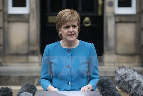 Hau Brexit: Scotland chuan bi mo van phong thuong mai tai Duc - Anh 1