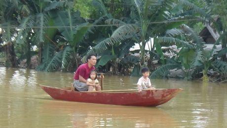 Chum anh: Mien Trung van bong benh trong lu - Anh 11