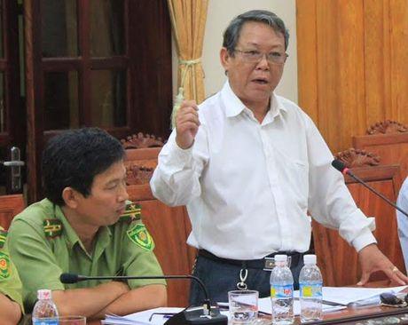Binh Dinh: Cha lam Chi cuc truong Kiem lam, con lam pho, thau ly co dat tinh? - Anh 2
