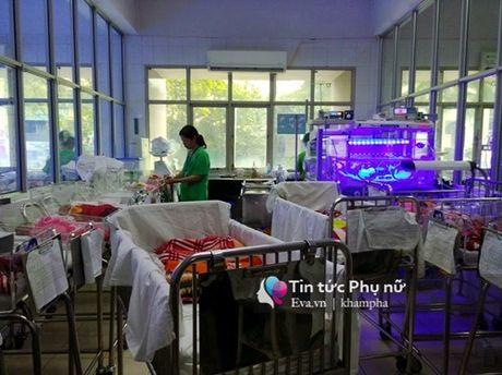 Thai ky thu 4 - noi thay bung me tiep lua su song cho tre sinh non - Anh 4
