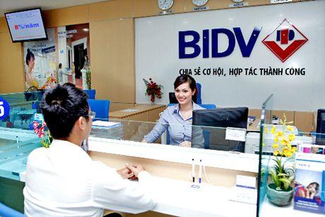 Den luot BIDV giam lai suat cho vay - Anh 1