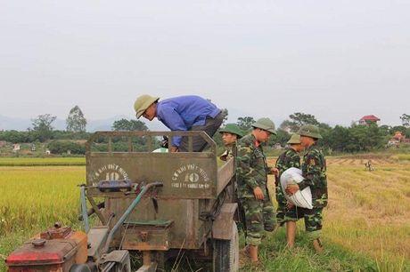 Quang Ninh hoi ha gat lua don sieu bao Sarika - Anh 6