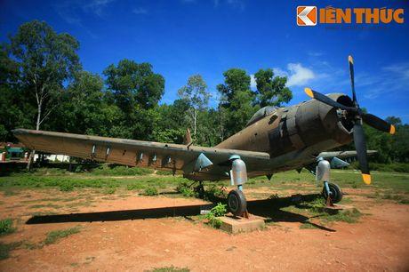 Xuc dong 'thanh dia' huyen thoai cua phu nu Viet Nam - Anh 9